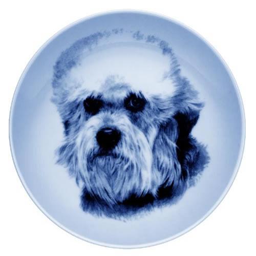 Dandie Dinmont Terrier dbp07571