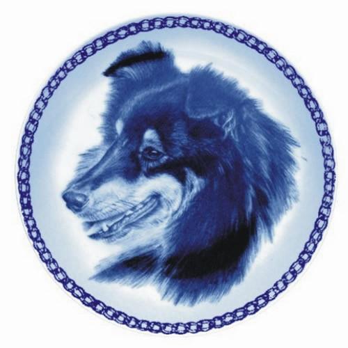 Shetland Sheepdog dbp07575