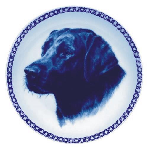 Labrador Retriever dbp07581
