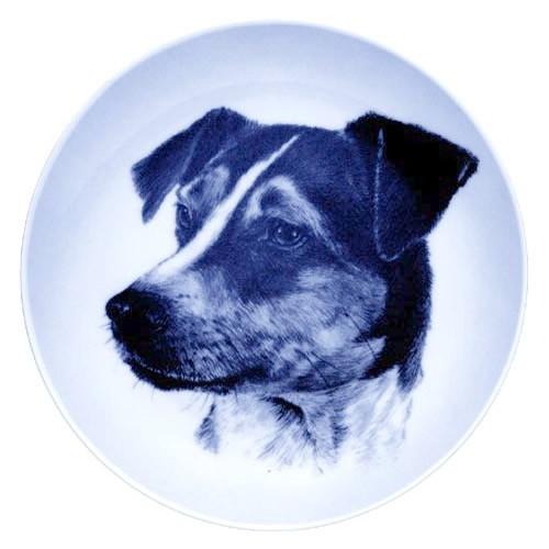 Danish Swedish Farm Dog dbp07585