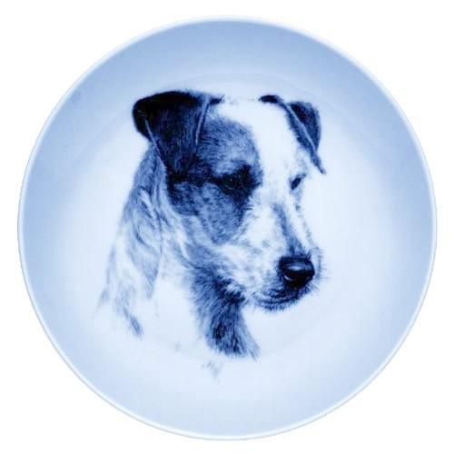 Jack Russell Terrier dbp07590
