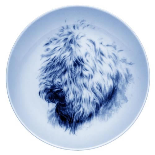 Soft Coated Wheaten Terrier dbp75600