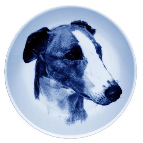 Greyhound dbp75606