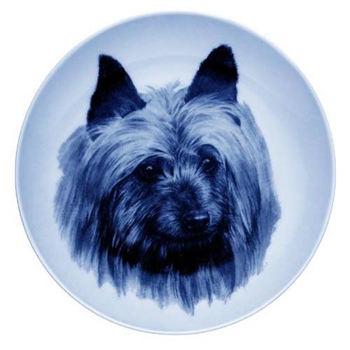 Australian Terrier dbp75618