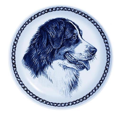 Bernese Mountain Dog dbp75639