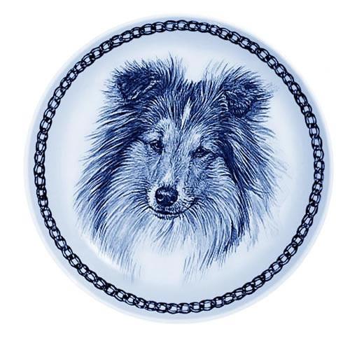 Shetland Sheepdog dbp75646