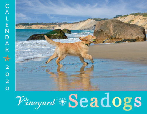 2020 Vineyard Seadogs Calendar