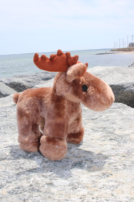 Maisy the Moose w/ squeaker
