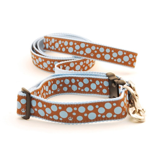 Polka Paws--Light Blue on Brown (Leashes)