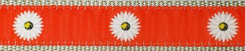 Daisy on Orange (Narrow Collar)