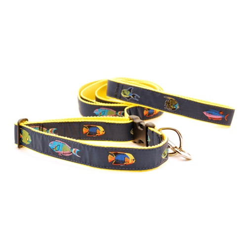 Tropical Fish (Wide Martingale)