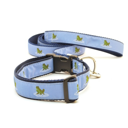 Frog (Wide Martingale)
