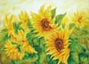 Diamond Dotz Hazy Daze Sunflowers