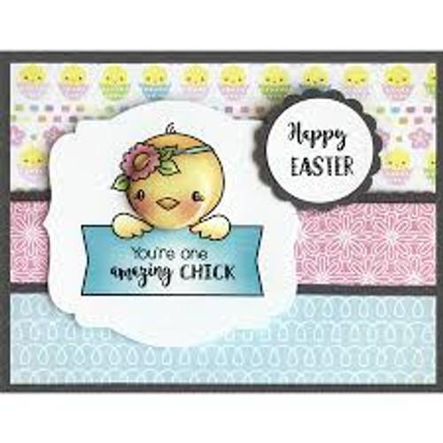 Darcie's Heart & Home Amazing Chic Stamp Set