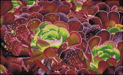 Diamond Dotz SQUARES Succulents