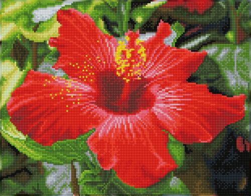 Diamond Dotz SQUARES Hibiscus in Bloom