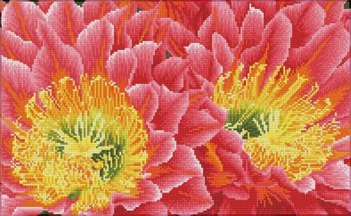 Diamond Dotz SQUARES Desert Blooms