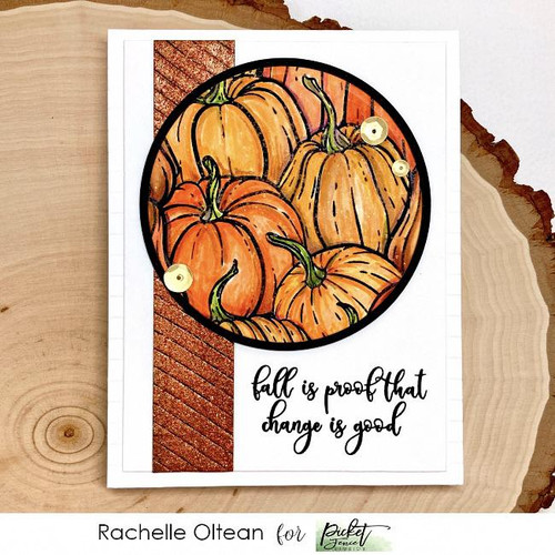 Picket Fence Studios All the Gourds Stamp Set