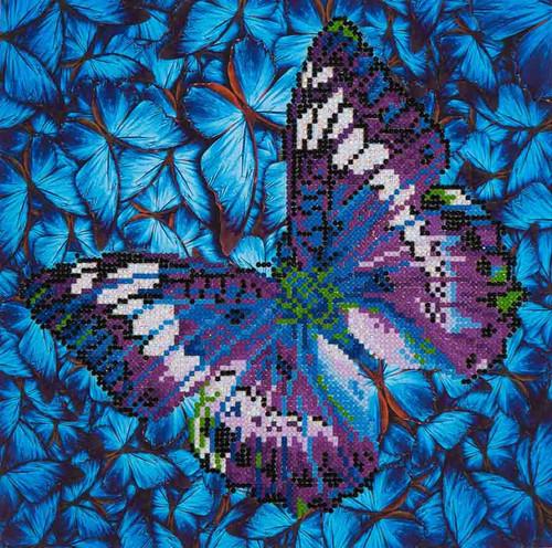 Diamond Dotz Flutter by Mauve