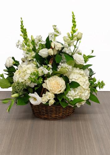 Fresh Basket in White