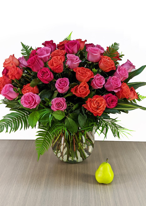the 50 Assorted Rose Dazzler