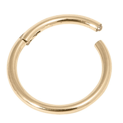 Gold Steel Hinged Ring