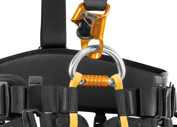 Petzl C038BA0 Falcon Ascent