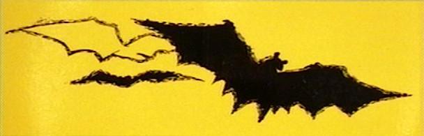 NSS Miniature Bat Sticker