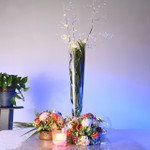 LED Crystal Light Branch