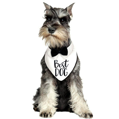 Pet Dog Bow Tie Bandana