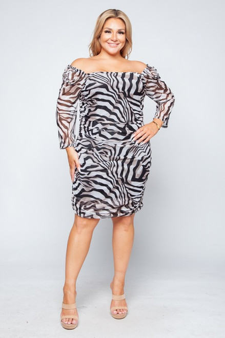 Print Meshed Ruched Dress