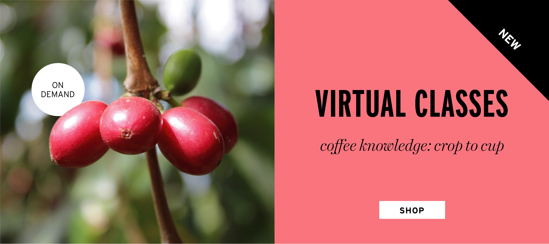On Demand virtual coffee knowledge classes