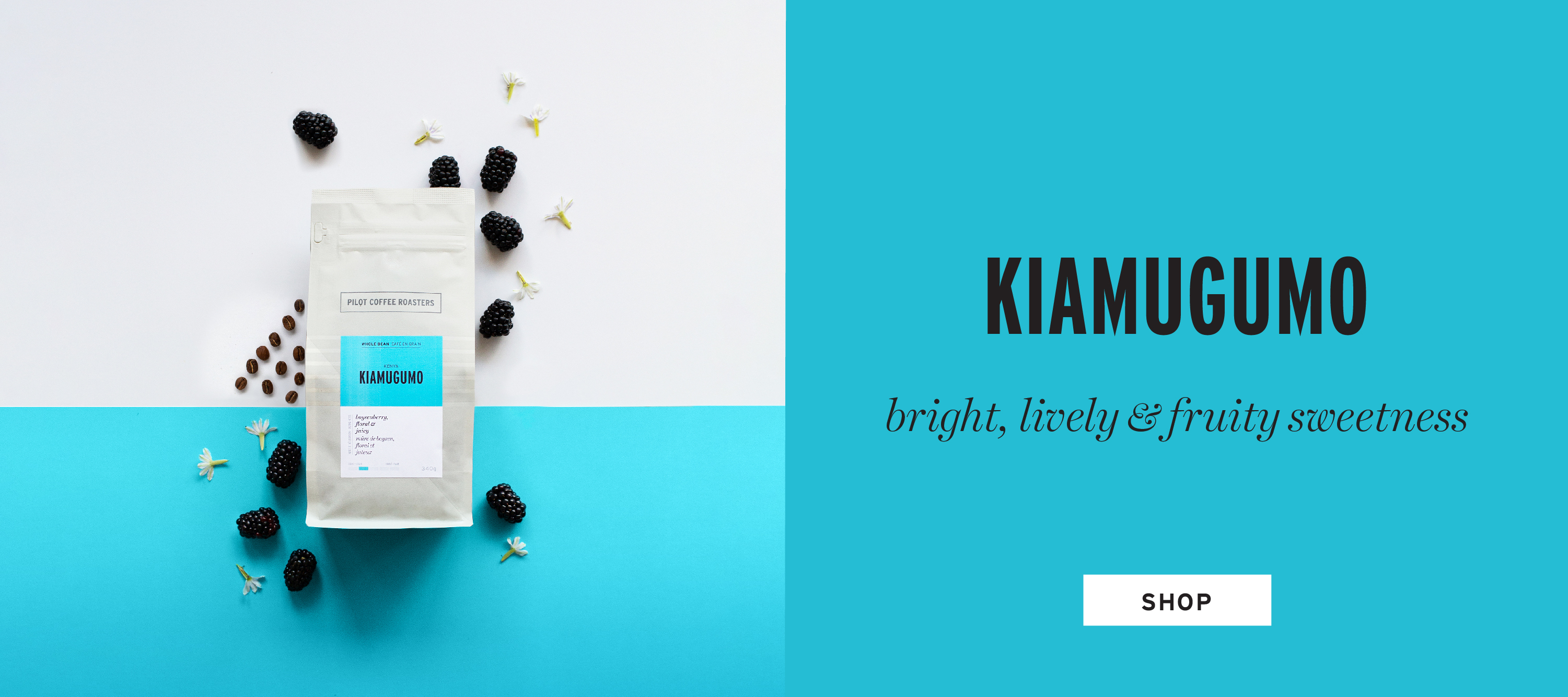 Kiamugumo from Africa. A classic Kenyan coffee that is bright and lively with nuanced fruity sweetness. SHOP NOW!