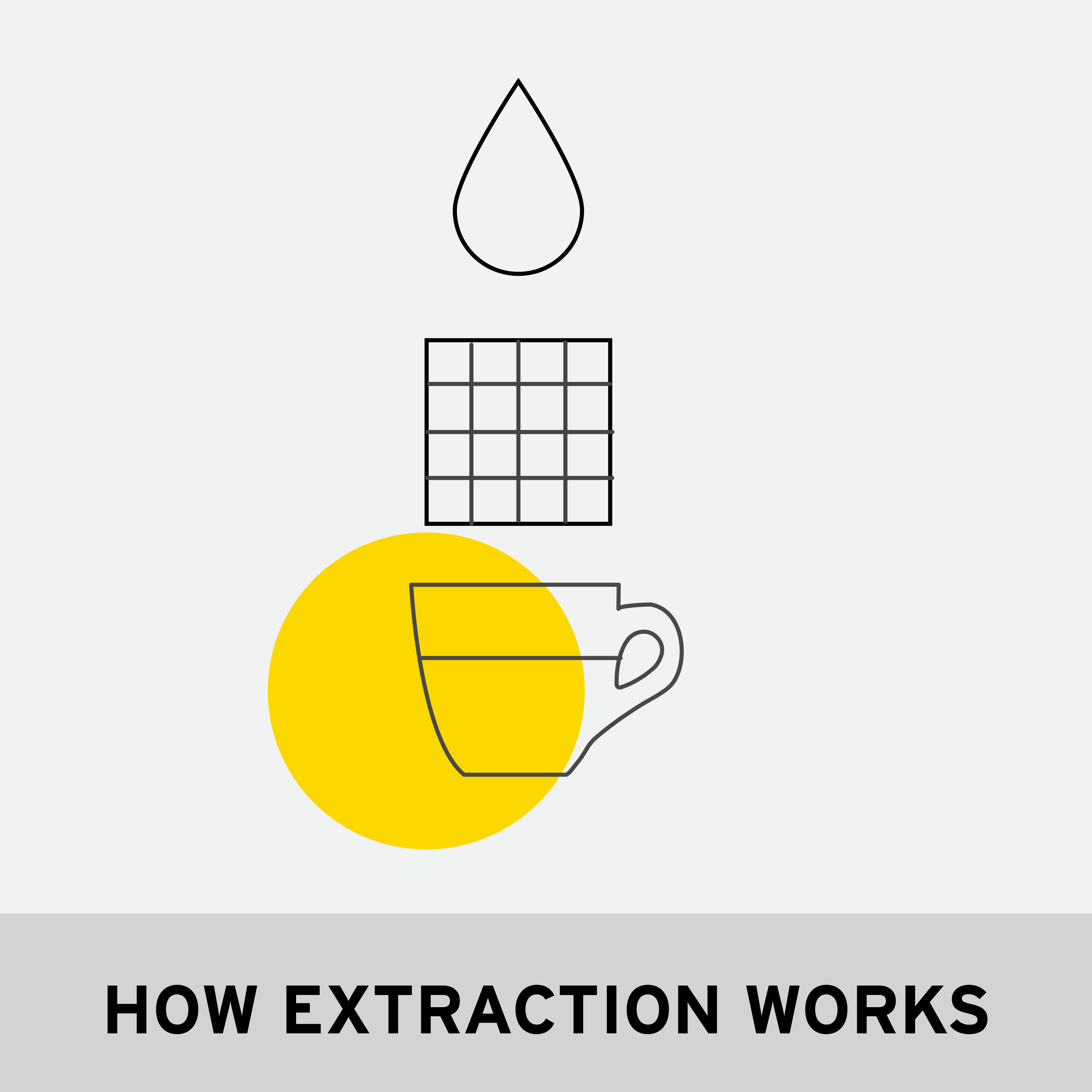 HOW EXTRACTION WORKS