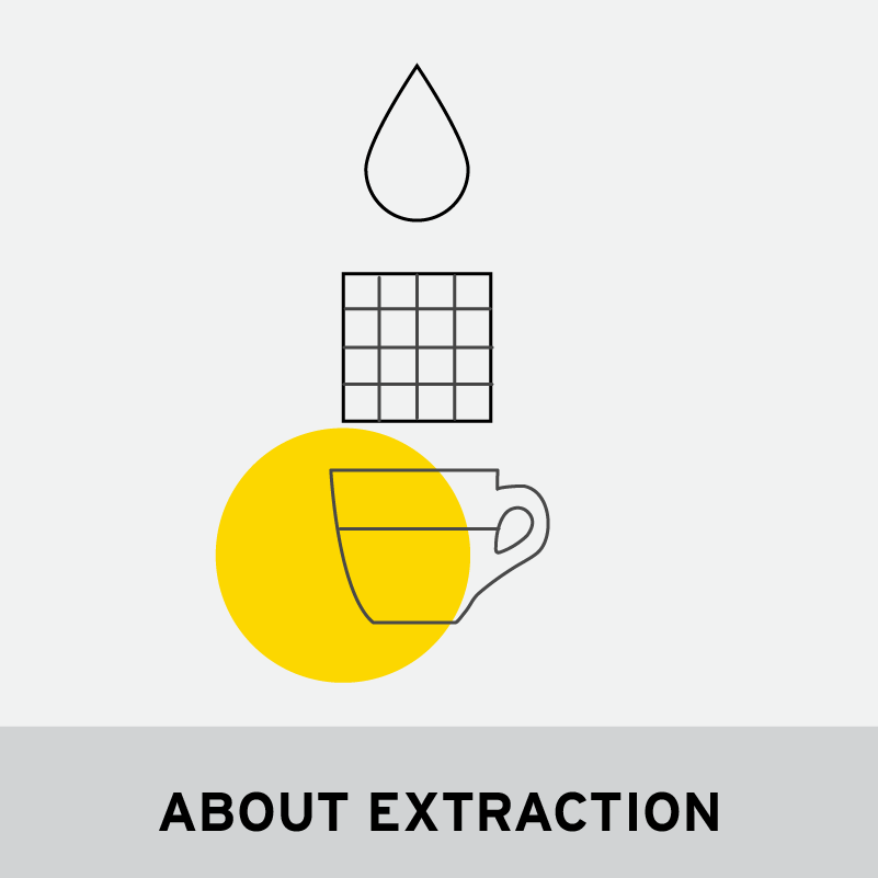 ABOUT EXTRACTION
