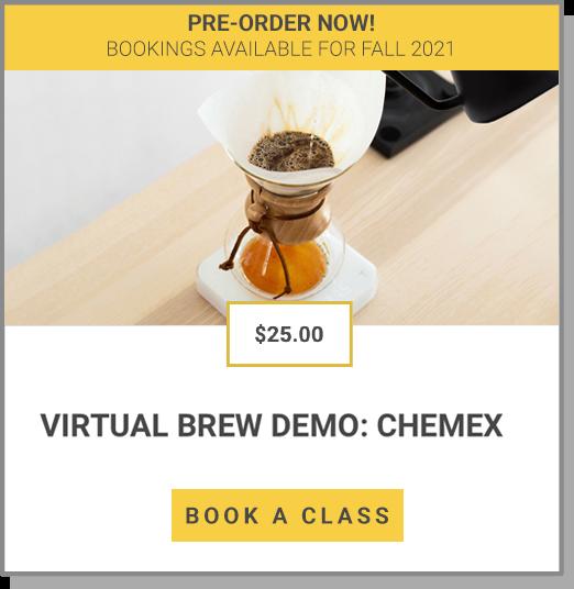 VIRTUAL BREW – CHEMEX
