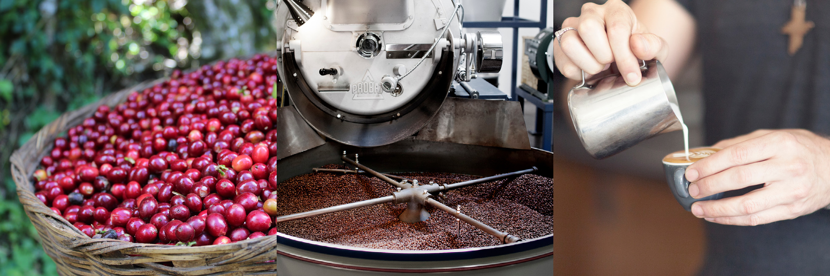 THE PILOT COFFEE ROASTERS STORY