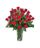 Grande Rose - Two Dozen Bouquet