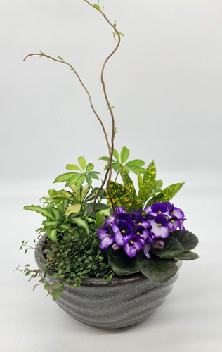 Small Ceramic Dish Garden Planter