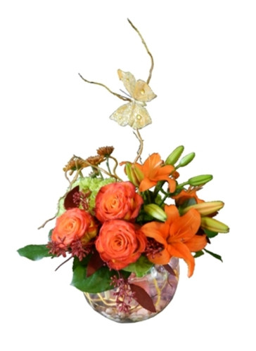 Uplifting Orange Posy
