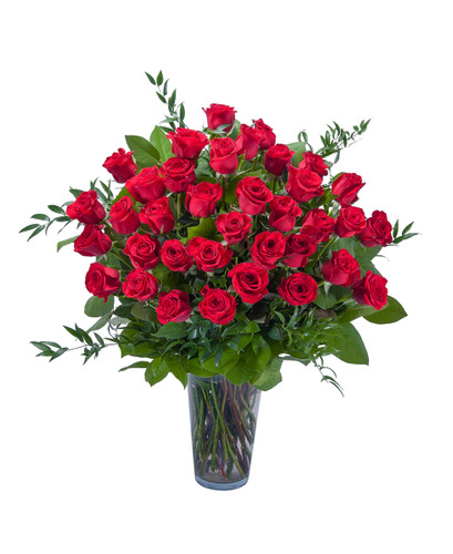 Room Full of Roses- 3 Dozen