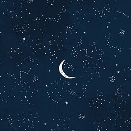 Dark night sky moon fabrics design