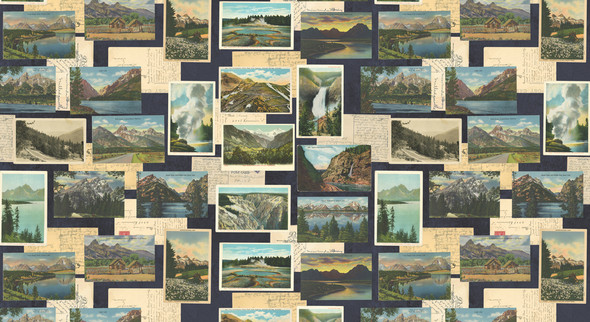 Mountain scene vintage postcards fabric Night Sky cotton fabric Outdoorsy QTR YD