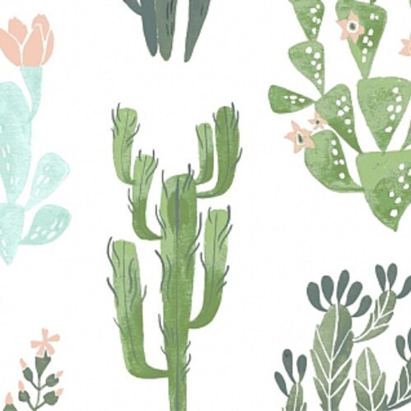 Watercolor cactus succulent fabrics design