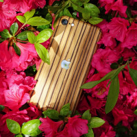 Toast wood iPhone SE (2nd gen) cover in zebrawood, lifestyle with flowers.