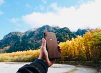 iPhone X cover in walnut, out in the wilds.