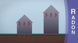 What is Radon Custom Video
