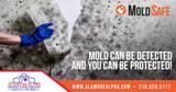 Mold Safe Social Media Ads