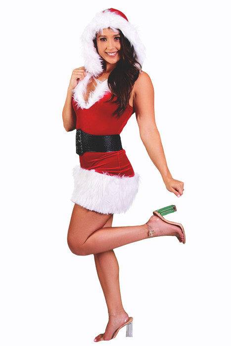ba004216fcd ... Shop this women s sexy Santa costume featuring a red velvet dress with  hood ...