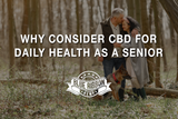 Why Consider CBD for Daily Health as a Senior